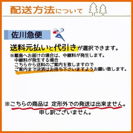 ● カワサキ FC420V エアクリーナーエレメント 【純正部品 新品】乾式 エンジン部品 農機部品 エアフィルター コシ kawasaki s27a
